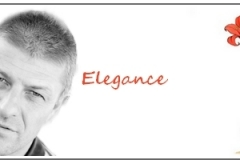 elegancebaner